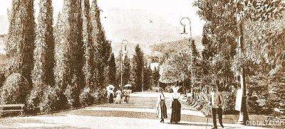 Главная аллея сада